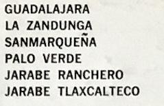 RCarrion_DanzasMexicanasSide2